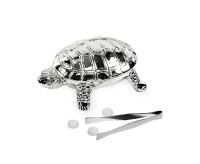 Saccharindose Turtle L 6 cm
